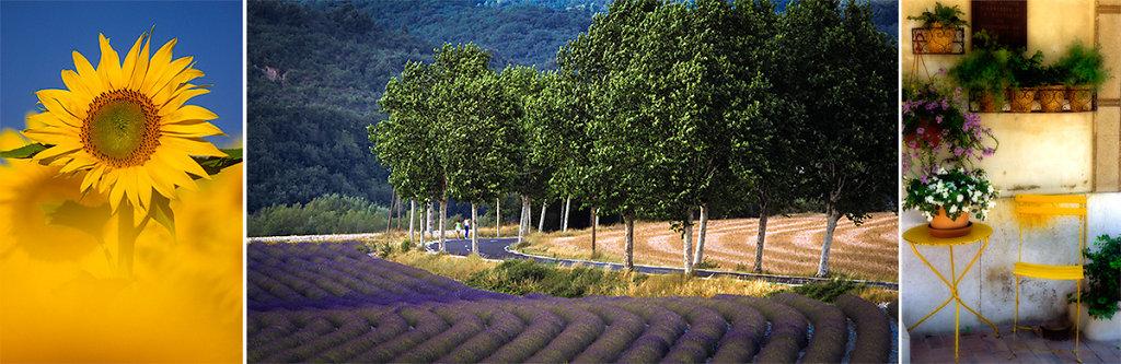 Provence-WS-Banner-1.jpg