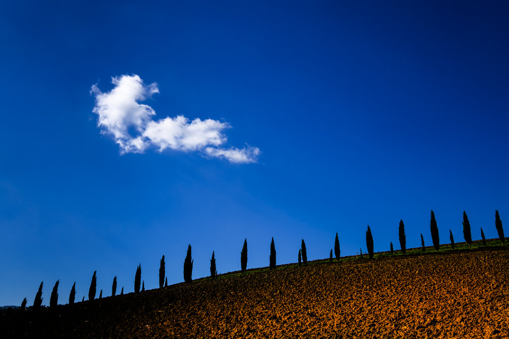 Along the Road To Montalcino